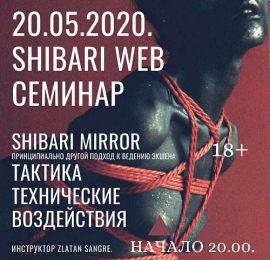 Дистанционный семинар. Shibari Mirror Сибари-Зеркало.