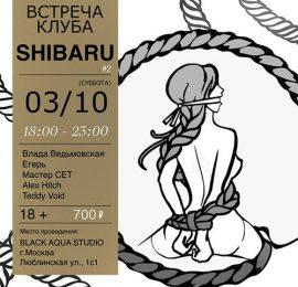 Встреча клуба Shibaru